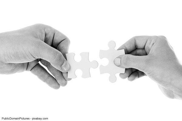 Erfolgreicher Fachhandel: Verknüpfung von Online und Offline